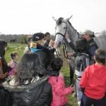 Благотворителна кампания набира средства за конна терапия на деца с увреждания