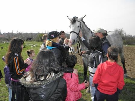 Photo of Благотворителна кампания набира средства за конна терапия на деца с увреждания