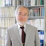Йошинори Осуми  доказа: Гладът и постенето са полезни
