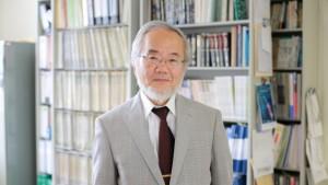Японският учен Йошинори Осуми.