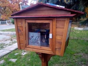 Къщички - библиотеки.