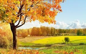Циганското лято си отива днес, от утре рязко понижение на температурите