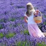 Чай от лавандула срещу стрес и главоболие