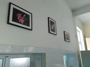 Фотографии - ученици.