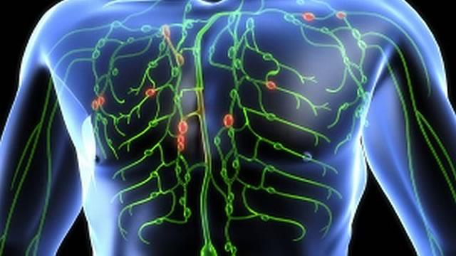 Photo of Топлата връзка между здравето, лимфата и движението