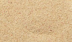 В тази зърнена култура са концентрирани много полезни вещества.