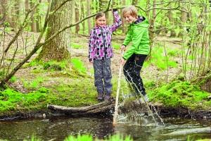 При избора на подходящ маршрут разходката в планината може да се окаже страхотно приключение, споделено с децата.