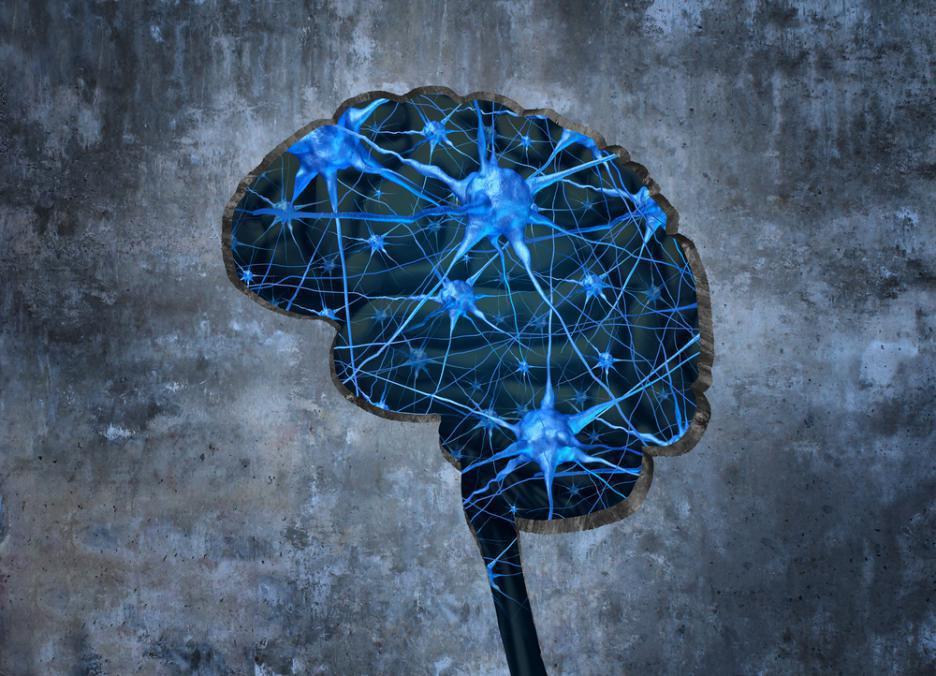 Photo of Ново изследване на мозъка на хора, родени с една ръка, удиви учените