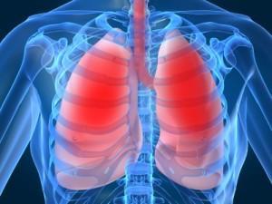 Хроничната обструктивна белодробна болест (ХОББ) ще бъде 3-та водеща причина за смърт през 2030-а година