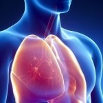 Идиопатичната белодробна фиброза и контролът на астмата са на фокус в Лятната научна среща на Българското дружество по белодробни болести