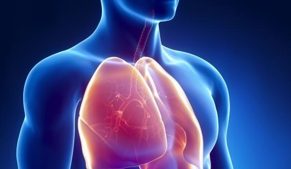 Photo of Идиопатичната белодробна фиброза и контролът на астмата са на фокус в Лятната научна среща на Българското дружество по белодробни болести