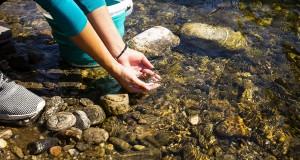 """30 български реки зарибени в рамките на инициативата на Лидл България """"Дай шанс на балканката"""""""