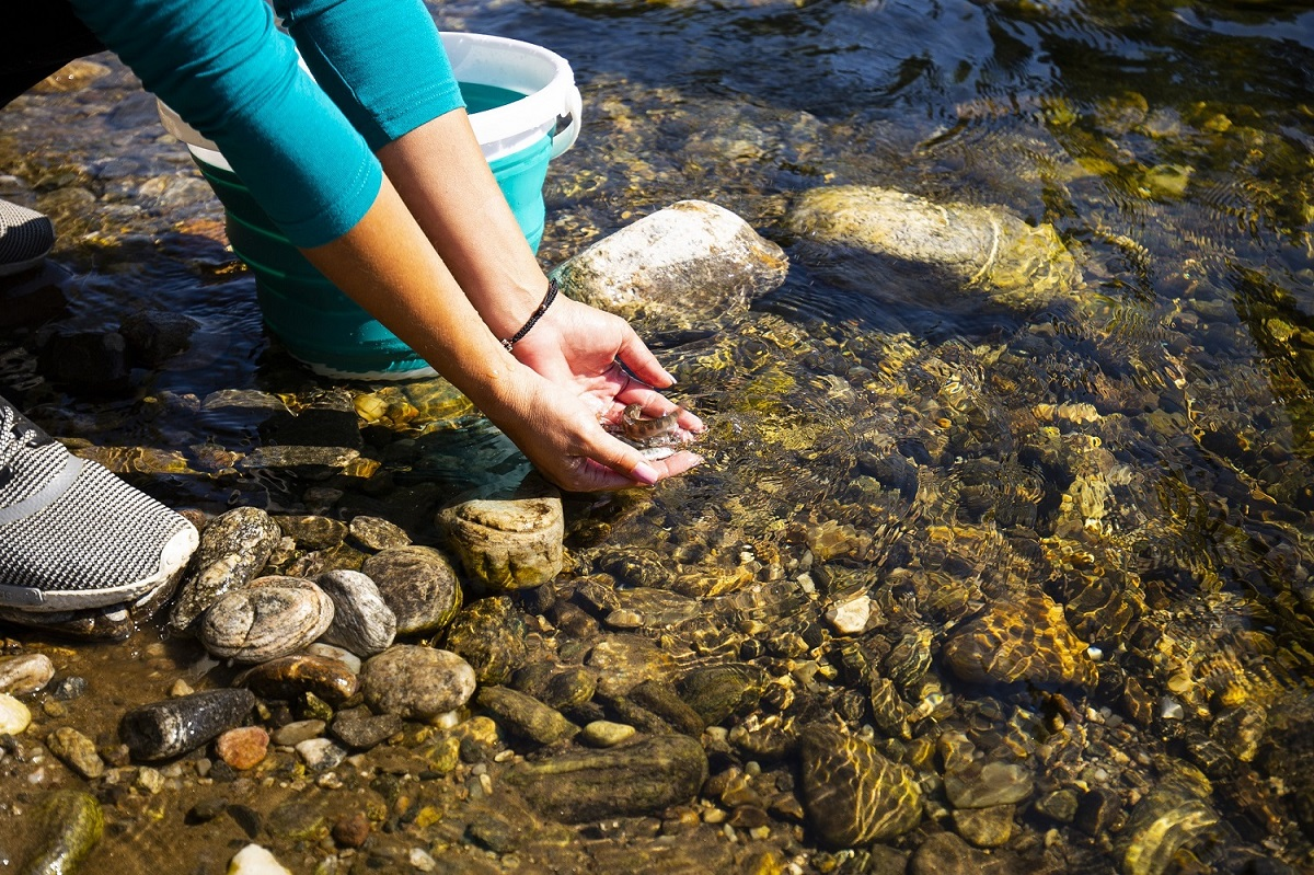 """Photo of 30 български реки зарибени в рамките на инициативата на Лидл България """"Дай шанс на балканката"""""""