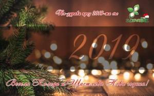 На нашите верни читатели пожелаваме много усмивки през новата 2019-та година. Бъдете по-информирани за всичко, което е свързано с Вашето физическо и духовно здраве, личностно развитие и правилно хранене. Благодарим Ви за доверието. Благодарим, че вече повече от пет години сме заедно.   Честито Рождество Христово и успешна Нова година!