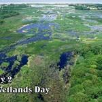 Влажните зони – естествено решение на проблемите с изменението на климата