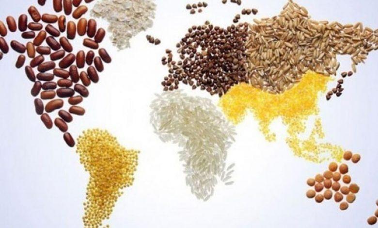 Днес отбелязваме Световния ден на прехраната